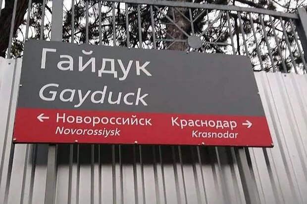Перевод на английский превратил название российской станции в «гей-утку»