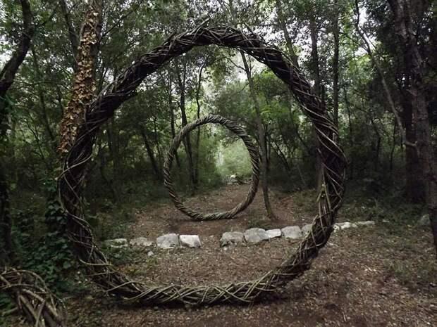 За год жизни в лесу Спенсер Байлс превратил его в сказку