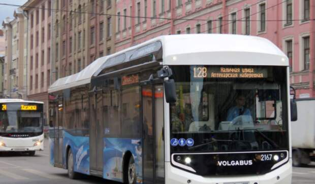 Общественный транспорт Петербурга переходит нагаз