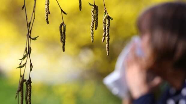 Врач дала рекомендации по лечению сезонной аллергии