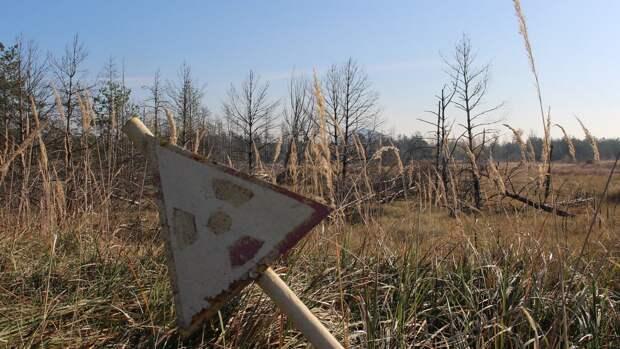 Эксперт подсчитал экономические потери от чернобыльской катастрофы