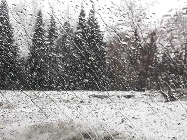 Синоптики обещают в Ленобласти 22 января мокрый снег и дождь