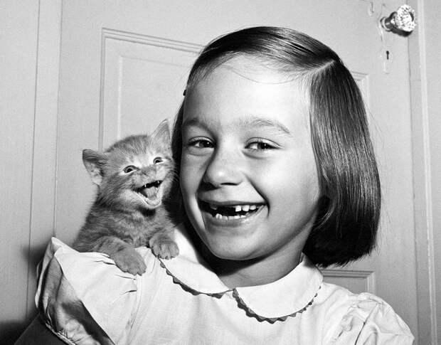Уолтер Чандоха – человек, который 70 лет фотографировал кошек   8 1
